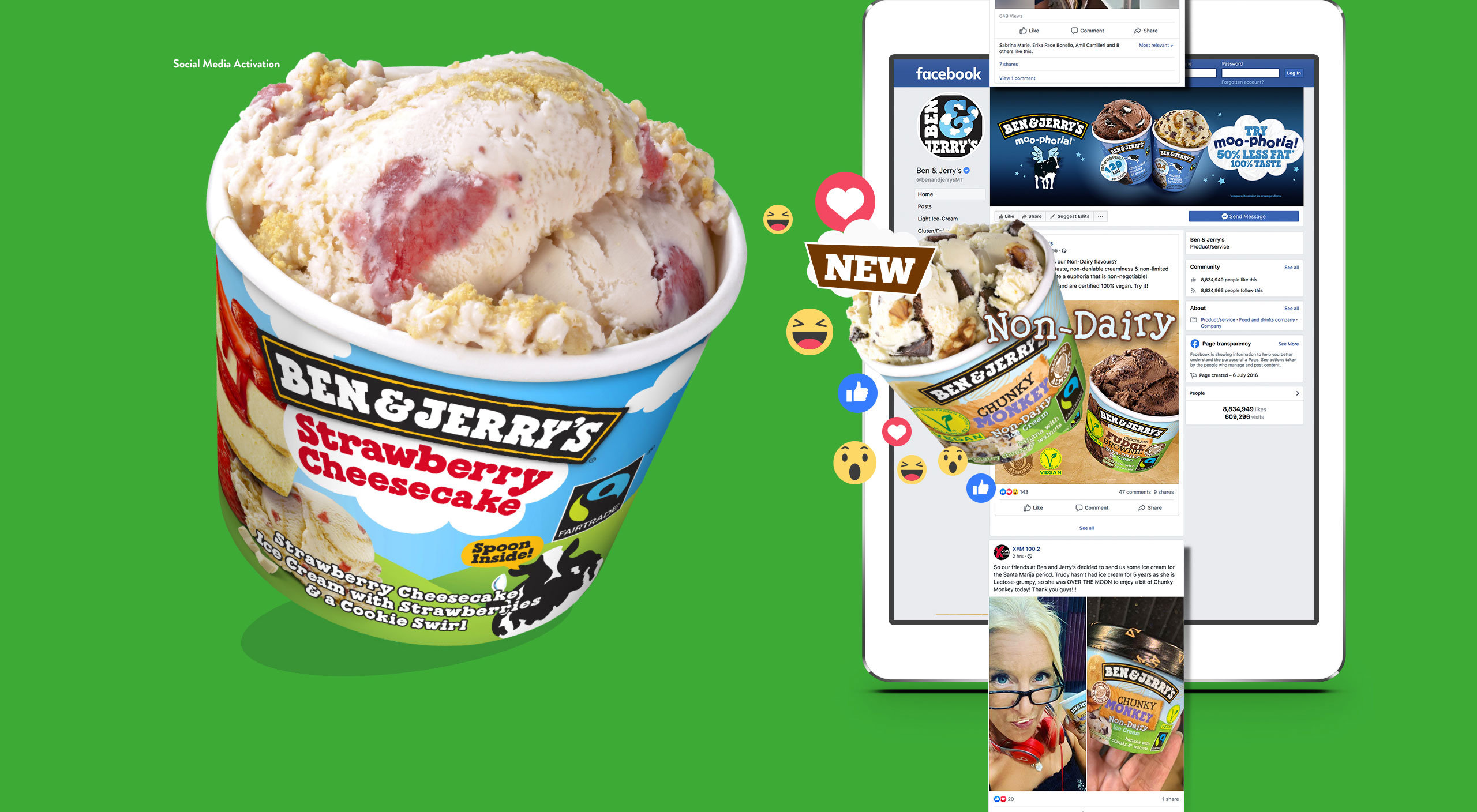 Ben-&-Jerry's-Portfolio-post-2_10 case study